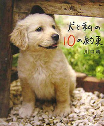 inutowatashino10noyakusoku